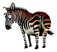 Illustration for Darlington-based marketing company Burnt Zebra.